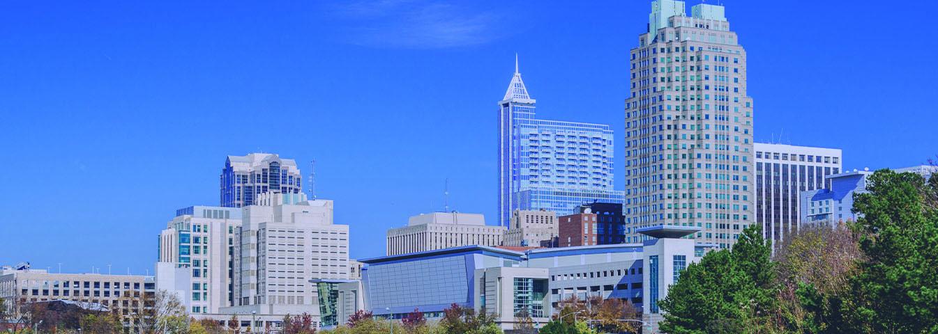 Raleigh_Blue